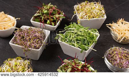 Mix Of Various Sprouts On Black Background. Sprouted Seeds. Healthy Eating, Detoxification.