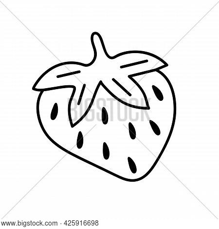 Strawberry Hand-drawn Outline Doodle Icon. Vector Sketch Illustration Of Healthy Berry - Fresh Raw S