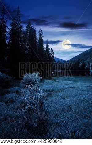 Lake Of Synevyr National Park At Night. Beautiful Summer Scenery Of Carpathian Mountains In Full Moo