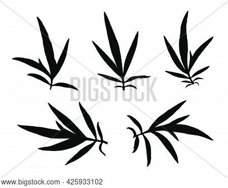 Black Thin Grass Leaves Silhouettes Isolated On White. Autumn Fallen Field Grass Leaves. Stencil Vec