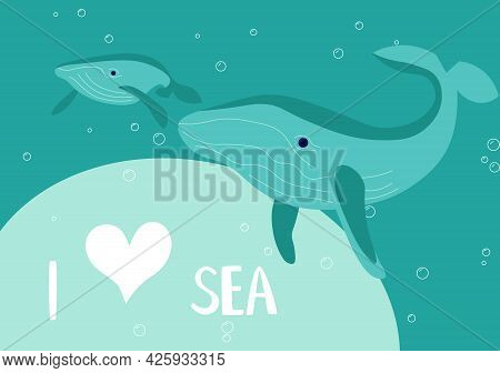 Underwater Scene With Mother And Baby Blue Whale On Aquamarine Background