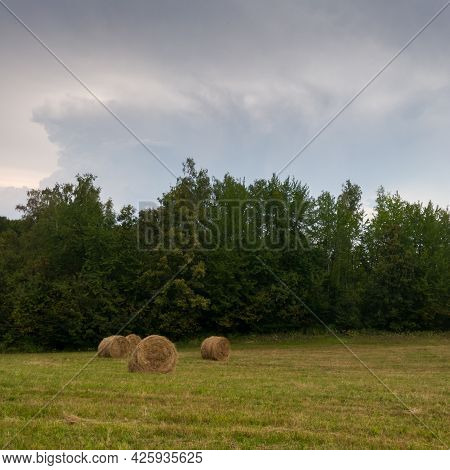 Rural Landscape With Rolls Of Hay, Meadow And Roll Bales During Overcast Summer Day