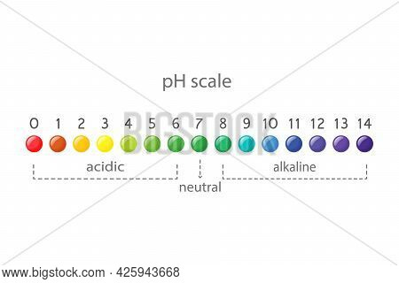 Ph Value Scale Chart For Acid And Alkaline Solutions, Acid-base Balance Infographic.