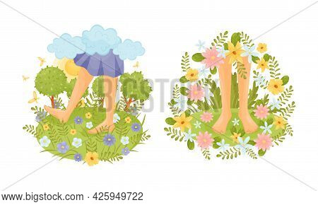 Bare Feet Walking Through The Field Or Meadow Touching Soft Green Grass Vector Scene Set