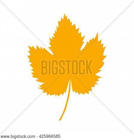 Autumn Leaf, Herbal Element. Fall Orange Grape Leaf. Can Be Used As Sign, Symbol, Icon. Autumn Botan