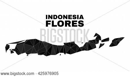 Low-poly Flores Islands Of Indonesia Map. Polygonal Flores Islands Of Indonesia Map Vector Is Filled