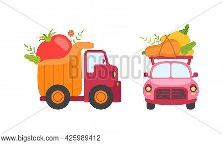 Cute Cars Delivering Vegetables, Small Trucks Shipping Fresh Zucchini, Tomato, Pumpkin Ripe Vegetabl