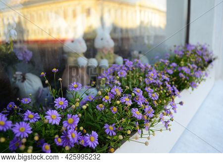 Purple Flowers On The Window Sill Of A Showcase, A Showcase With Bunnies.