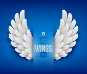 Artificial paper wings - vector illustration poster