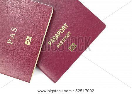 Danish and Turkish Passport