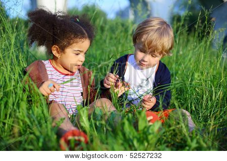 Little girl and boy sitting in the grass and consider a blade of grass poster