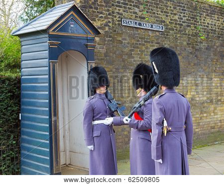 Horse Guards Inspection