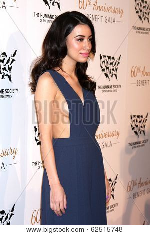 LOS ANGELES - MAR 29:  Christian Serratos at the Humane Society Of The United States 60th Anniversary Gala at Beverly Hilton Hotel on March 29, 2014 in Beverly Hills, CA