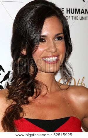 LOS ANGELES - MAR 29:  Torrey DeVitto at the Humane Society Of The United States 60th Anniversary Gala at Beverly Hilton Hotel on March 29, 2014 in Beverly Hills, CA