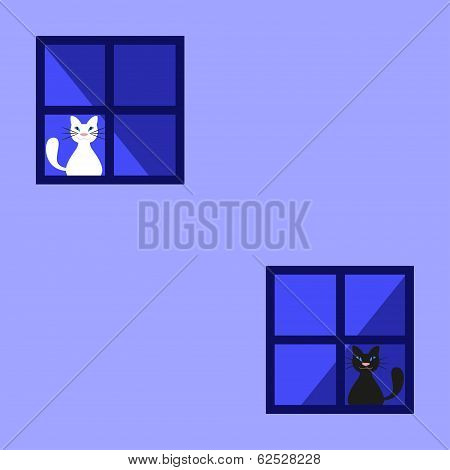 Cute Black And White Cats Behind A Curtain In The Window. Vector illustration poster
