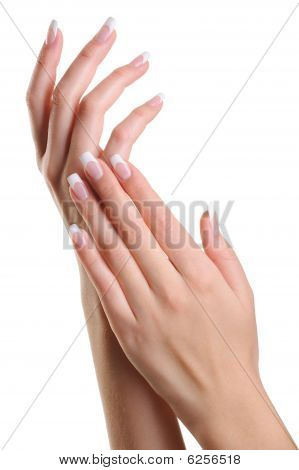 Beauty Elegant Female Hands With French Manicure