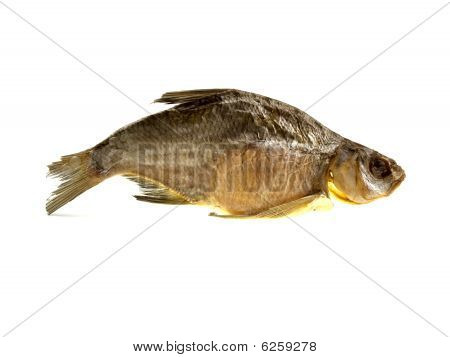 One Large Dried Fish