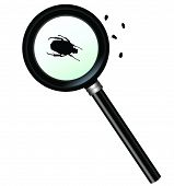 Magnifying glass with insect close-up vector work poster