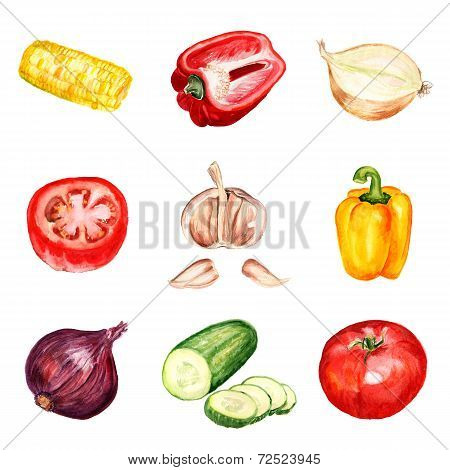 Set of watercolor vegetables