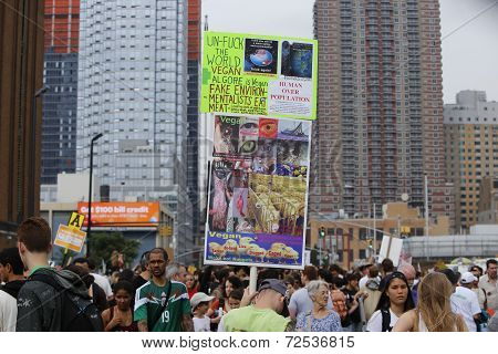 Signs along 42nd Street