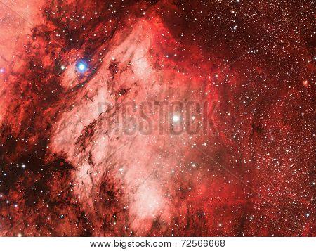 Pelican Nebula IC5070