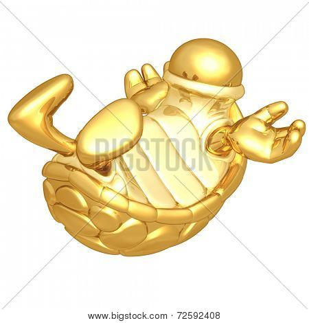 Turtle Problem