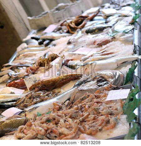 Fish For Sale In The Stand Of The Fishmonger In A Market