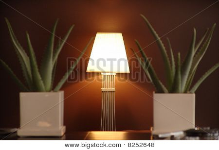 lamp near the wall and plants