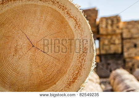 Chopped Firewood Logs