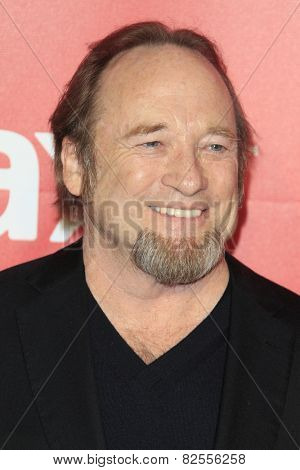 LOS ANGELES - FEB 6:  Stephen Stills at the MusiCares 2015 Person Of The Year Gala at a Los Angeles Convention Center on February 6, 2015 in Los Angeles, CA