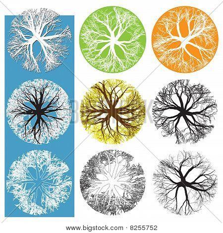 TreeTop symbolen