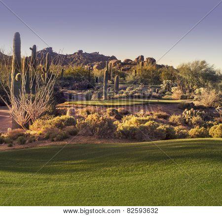 Beautiful desert tee shot golf course - image cross processed