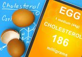 Documents with cholesterol formula and  how much cholesterol contains in an egg. poster