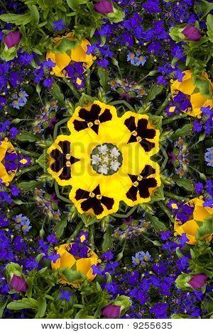 Flower Kaleidoscope Resembling A Mandala