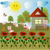Village with funny pigs ,house and poppies. poster