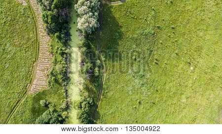 Spring lush green landscape of the field with green tree in the center and roads sodden with rain. Aerial view. Top view.