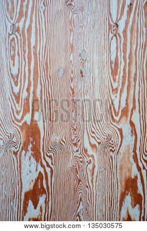 Wood background for graphic resources. Light brown sinuous shapes circular and linear.