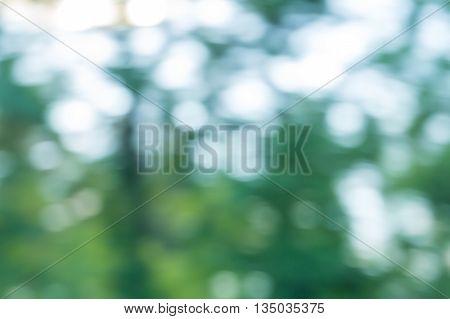 Natural Bokeh Background.