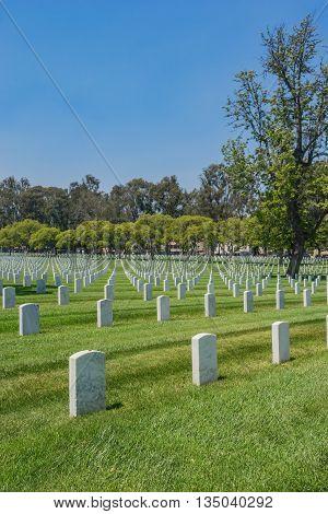 Empty Military Cemetery