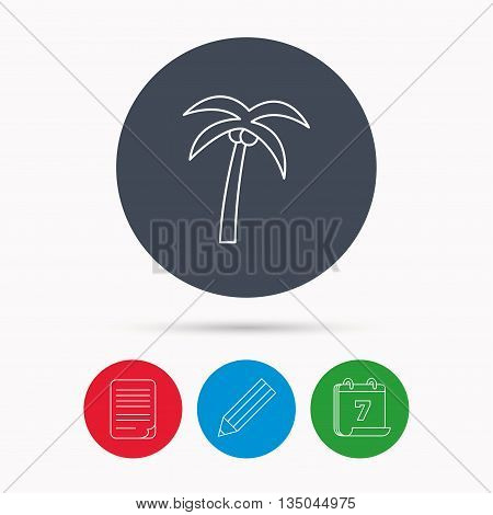 Palm tree with coconuts icon. Travel or vacation symbol. Nature environment sign. Calendar, pencil or edit and document file signs. Vector