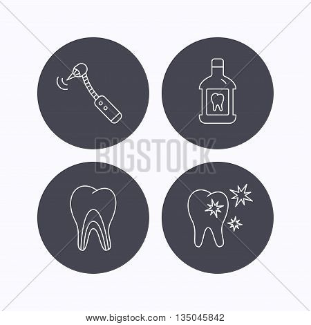 Tooth, mouthwash and dentinal tubules icons. Healthy teeth, dentinal tubules linear sign. Flat icons in circle buttons on white background. Vector