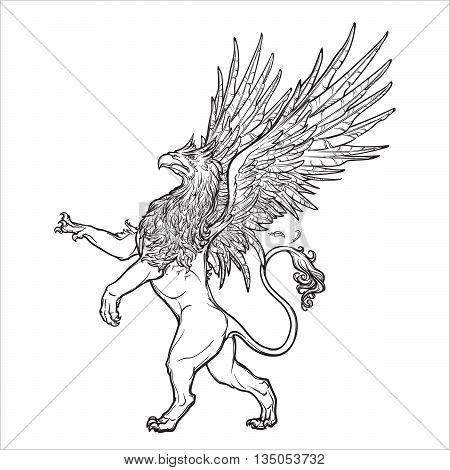 Griffin, griffon, or gryphon legendary creature from Greek mythology. Sketch on a grunge beckground. Vintage design. EPS10 vector illustration.