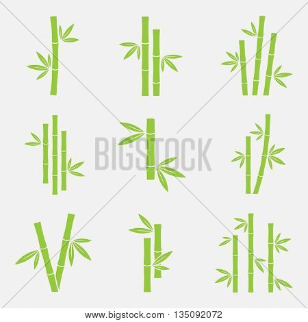 Bamboo vector icon set isolated on a white background. Silhouettes of bamboo trunks stems or trees with leaves. Green symbols tropical bamboo.
