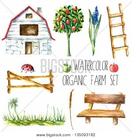 Watercolor organic farm. Hand drawn objects house. tree, flower, stairs, bench, grass, fence, ladybug and spica isolated on white background vector