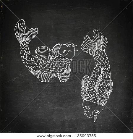 Catfish fish image. Hand drawn vector stock illustration. Chalk board drawing