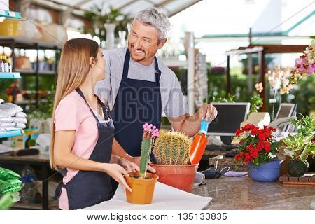 Trainee getting apprenticeship from florist in a flower shop