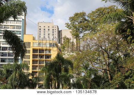 Jungle In The City