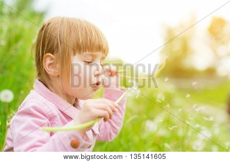 cute little girl blowing off dandelions in park with green lawn on the background