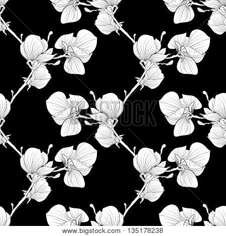 Beautiful monochrome black and white seamless background with blooming magnolia tree branches.