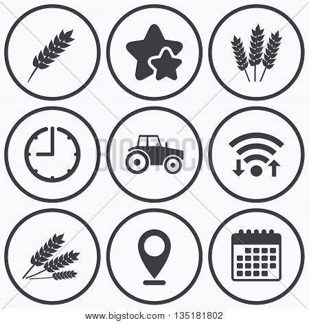 Clock, wifi and stars icons. Agricultural icons. Wheat corn or Gluten free signs symbols. Tractor machinery. Calendar symbol.